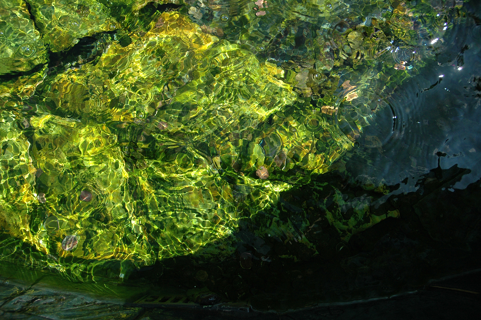 Download Texture