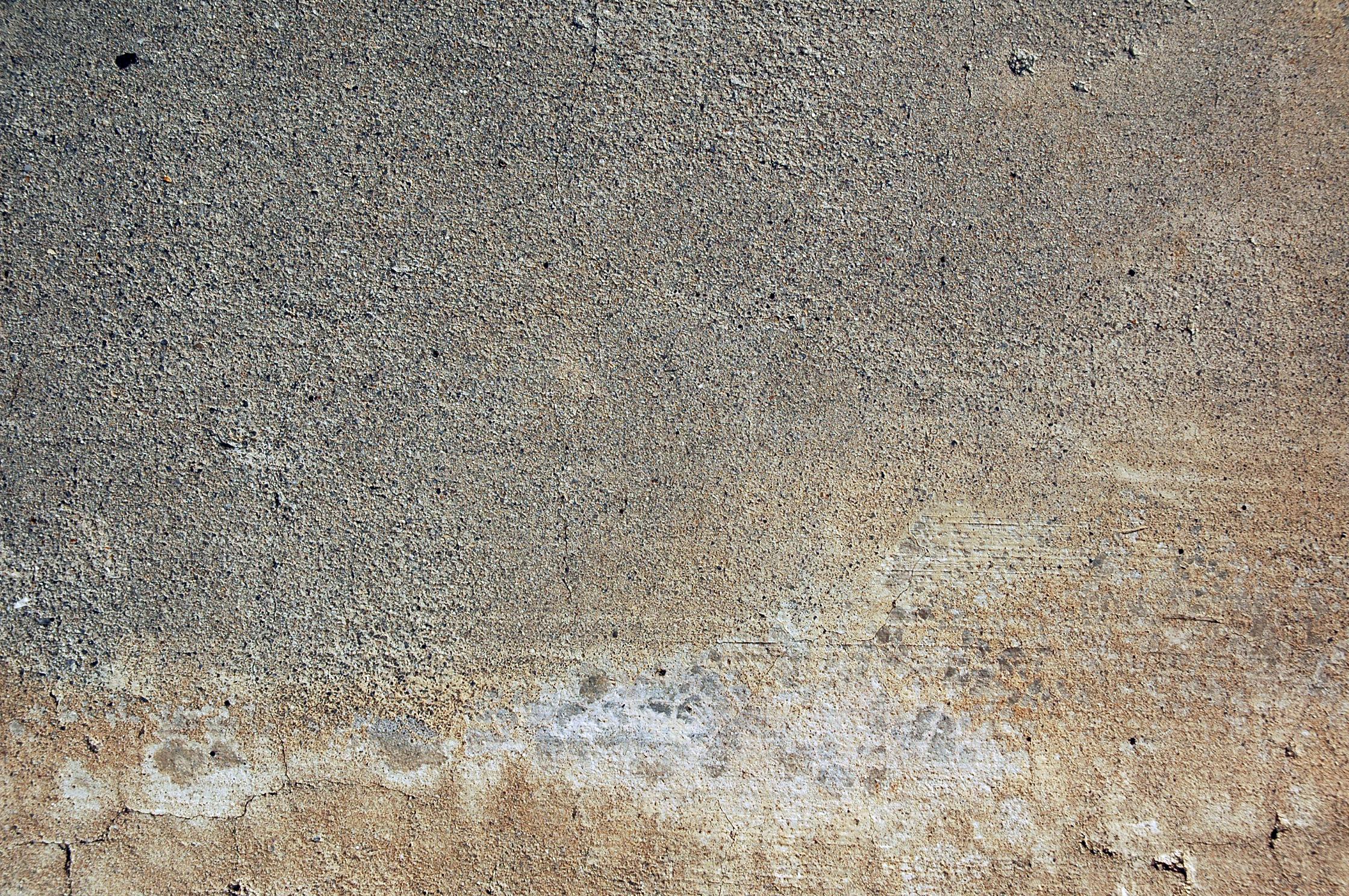 Free » DSC_3514 Textures from TextureKing